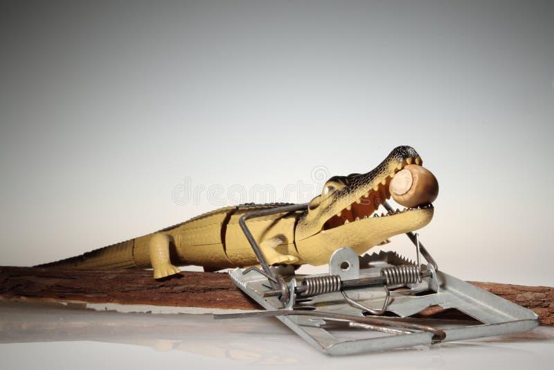 Krokodil och ingrepp. arkivbilder