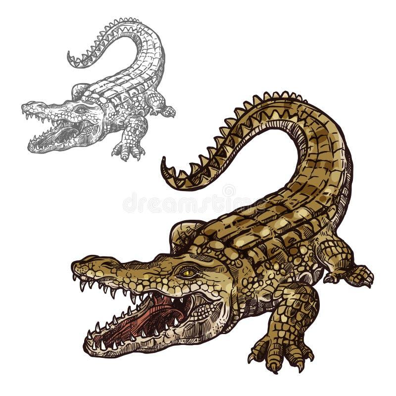 Krokodilalligatorvektor lokalisierte Skizzenikone stock abbildung