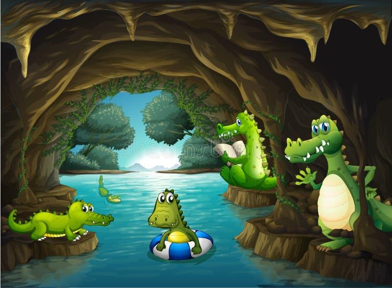 Krokodillen die in het hol zwemmen royalty-vrije illustratie