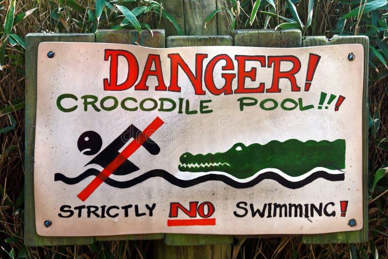 Krokodilpöl inget simningtecken arkivfoton