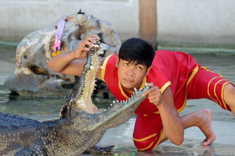 Krokodilshow på den Samutprakarn krokodillantgården och zoo arkivbilder