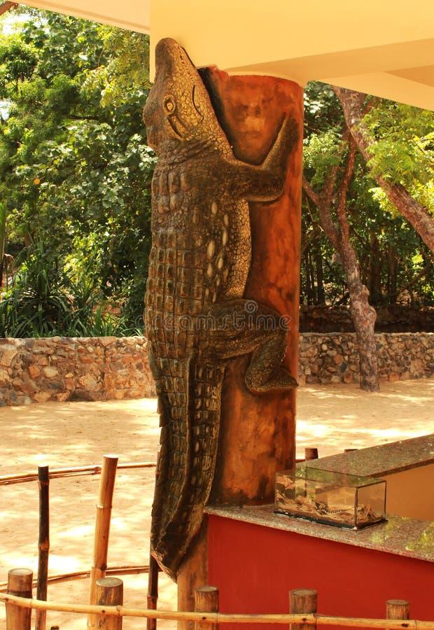 krokodilstandbeeld royalty-vrije stock foto's