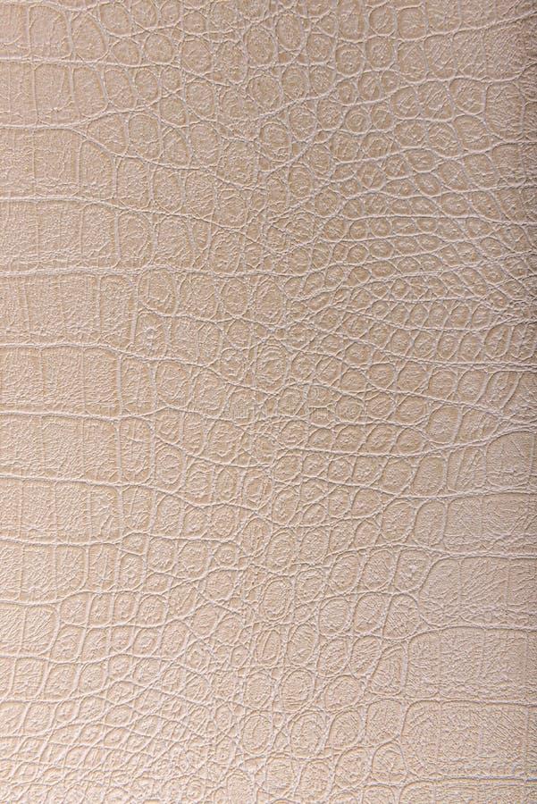 Krokodyl skóry skóra, beżowy tło zdjęcie royalty free