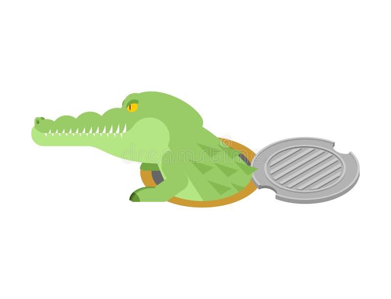 Krokodyl w ściekowym lągu Aligator w manhole pokrywie Drapieżnik a ilustracji