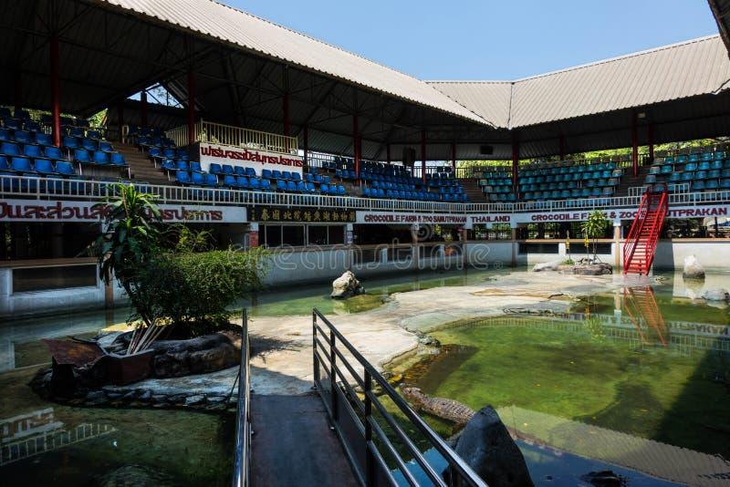 Krokodyla saltwater krokodyla boju rolny przedstawienie Samutprkarn Tha obrazy stock