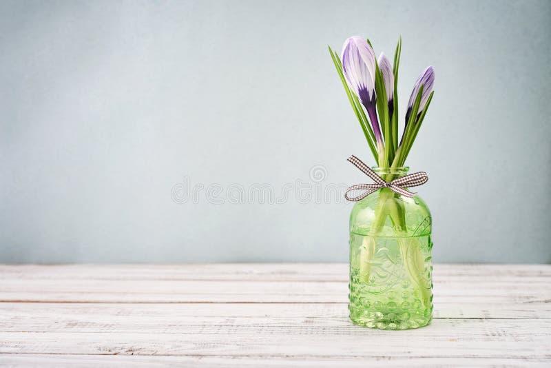 Krokus in den Vasen stockbilder