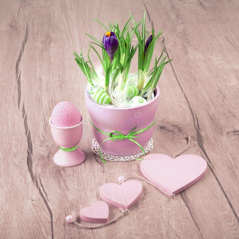 Krokusblommor och rosa påskgarneringar på trä royaltyfria bilder