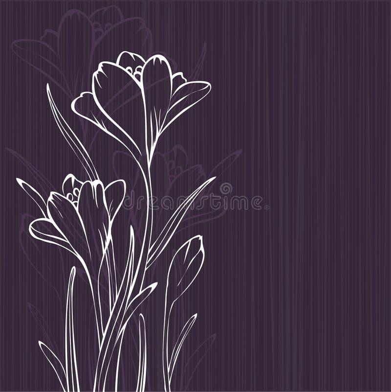 krokusdesignlila royaltyfri illustrationer