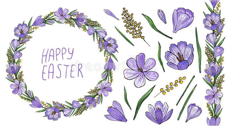 Krokuskrans med mimosan och isolerade hand-drog blommor vektor illustrationer