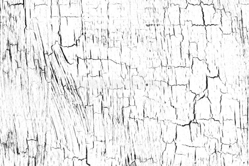 Krokvellyr, textur med krackad färg på vit bakgrund Strålar, penseldrag Tunn, abstrakt färgrock akryl, stock illustrationer