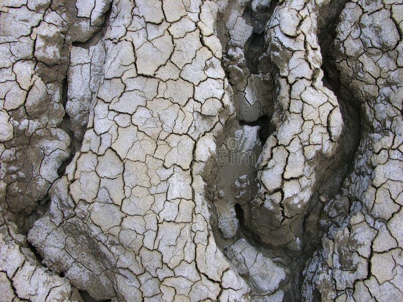 Krommen in de Woestijn royalty-vrije stock afbeeldingen