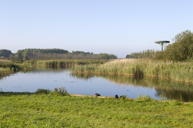 Kromslootpark Almere lizenzfreies stockbild
