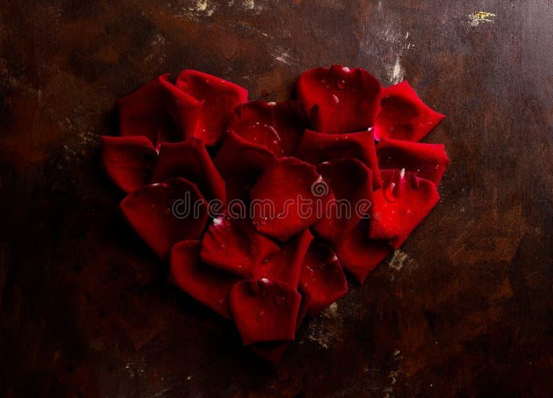 Kronblad för ros för lägenhet för bästa sikt formar lekmanna- röda i hjärta på mörk bakgrund Romans passionbegrepp red steg royaltyfria bilder