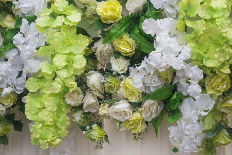 Kronbladblommabakgrund steg, blommar, blommor royaltyfria bilder