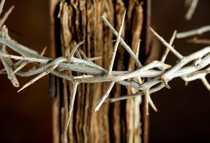 Krone auf Bibel stockfotografie