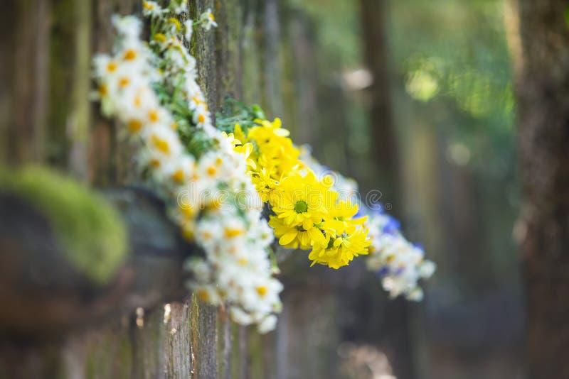 Kronen van verse bloemen stock afbeeldingen