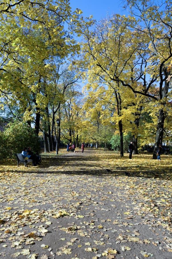 Kronstadt, Россия, октябрь 2018 Дорожка осенью в старом парке и отдыхая людях стоковая фотография rf