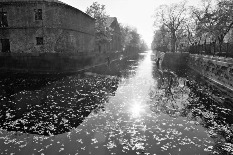 Kronstadt, Россия, октябрь 2018 Слепимость Солнца на воде старого канала и в воздухе осени стоковая фотография rf
