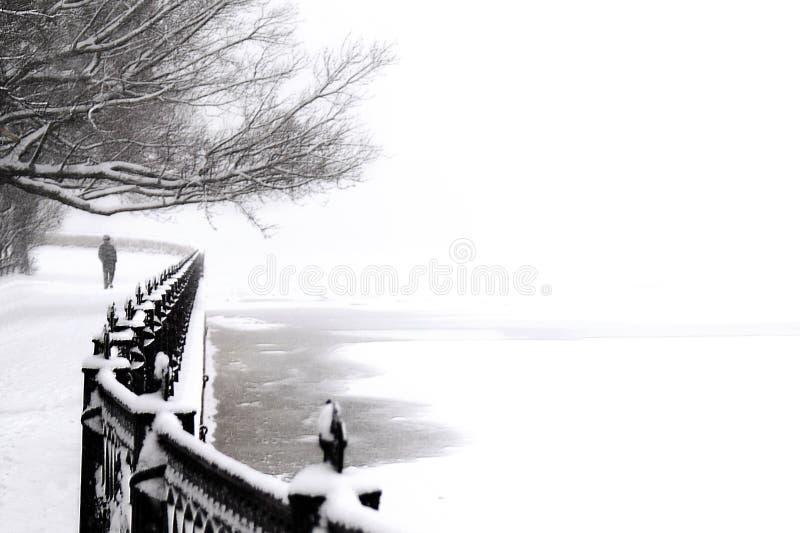 Kronverk embankment - 2 stock photo
