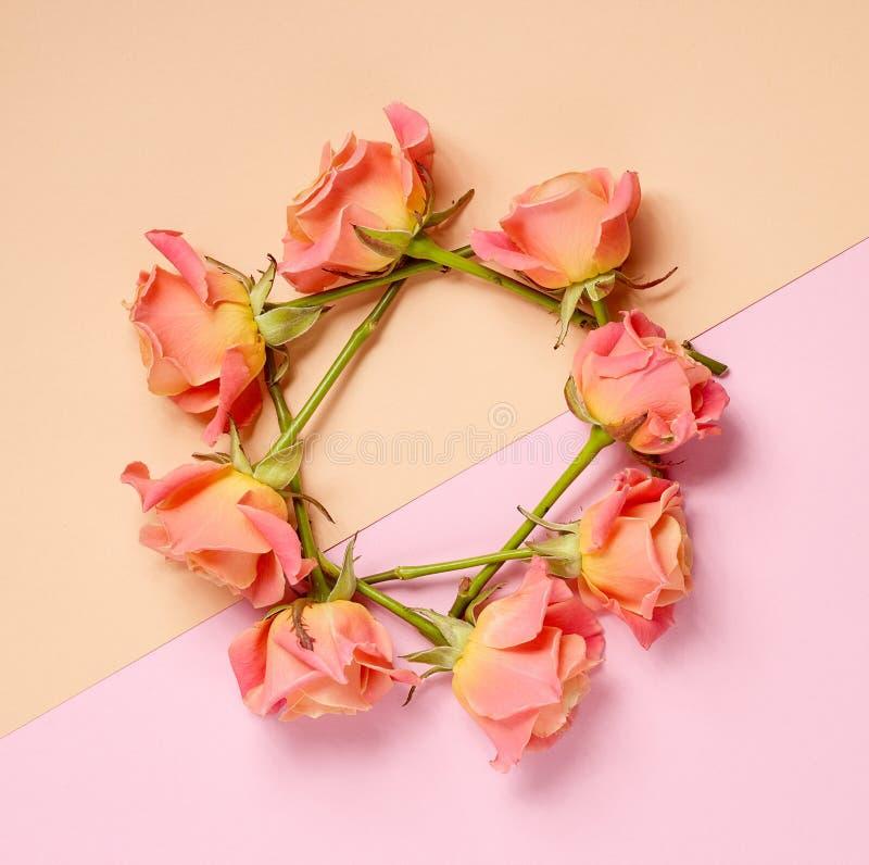 Kroon van roze rozen stock fotografie