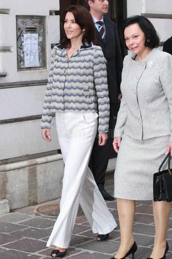 Kroonprinses Mary stock fotografie