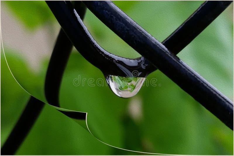 Kropla deszcz na kręcenie stronie fotografia royalty free