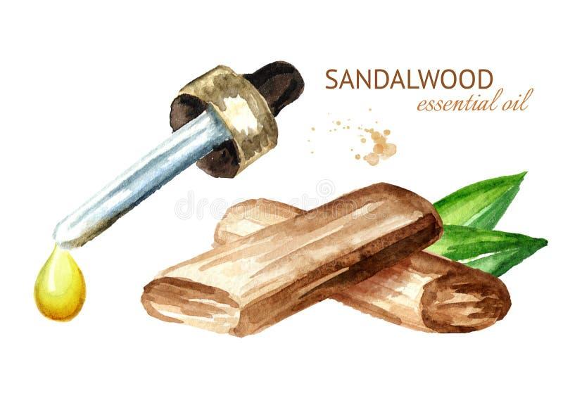 Kropla sandałowowie lub Chandan istotny olej kije z zielonymi liśćmi i Akwareli ręka rysująca ilustracja odizolowywająca na bielu royalty ilustracja