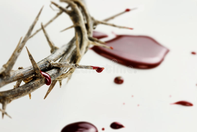 Krople krew obrazy stock
