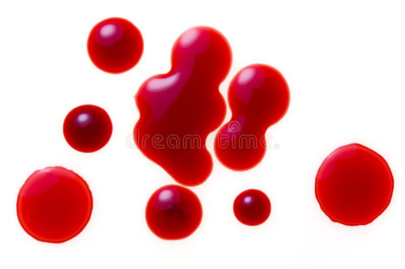 krople krwi fotografia stock