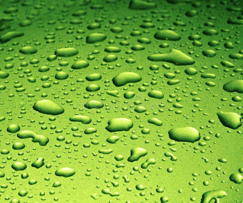 krople wody zielone. zdjęcie royalty free