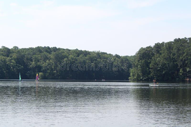 Kropp av vatten med kayakers och träd royaltyfri bild