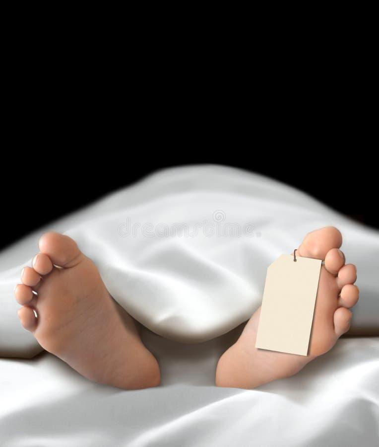 Kropp för död person som ligger i bårhuset royaltyfria foton