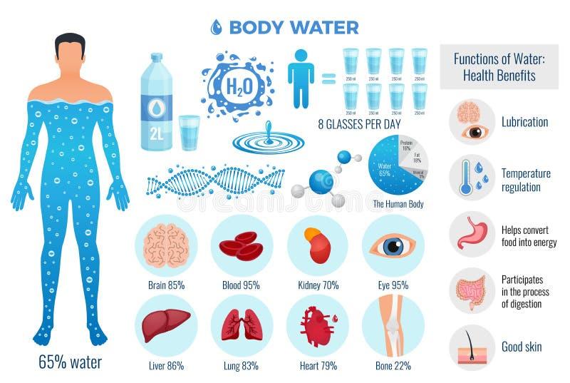Kropp- och vattenuppsättning stock illustrationer