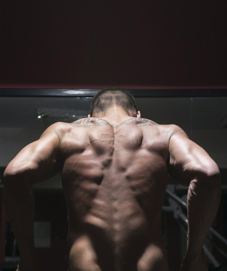 Kroppsbyggare från baksida arkivbild