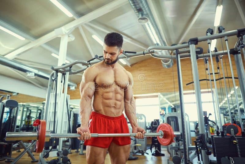 Kroppsbyggare med ett skägg med stångskivstången i idrottshallen royaltyfria foton
