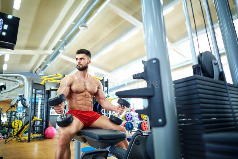 Kroppsbyggare med hantlar i idrottshallen royaltyfria bilder