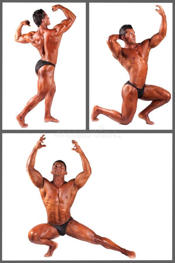 Download Kroppsbyggare Som Böjer Hans Muskler I Studiouppsättning Arkivfoto - Bild av athenen, mästare: 37349274