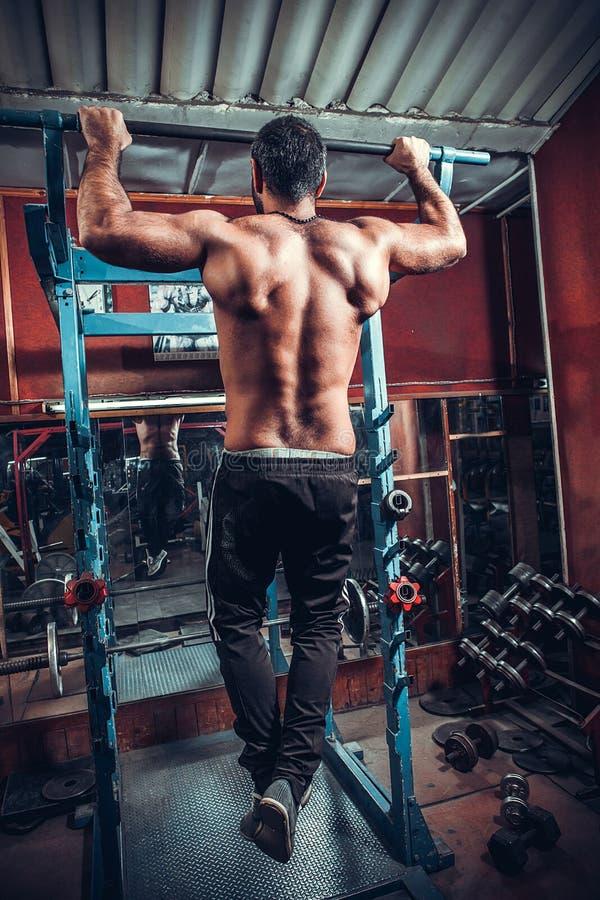 Kroppsbyggare som gör tungviktövningen för baksida arkivbilder