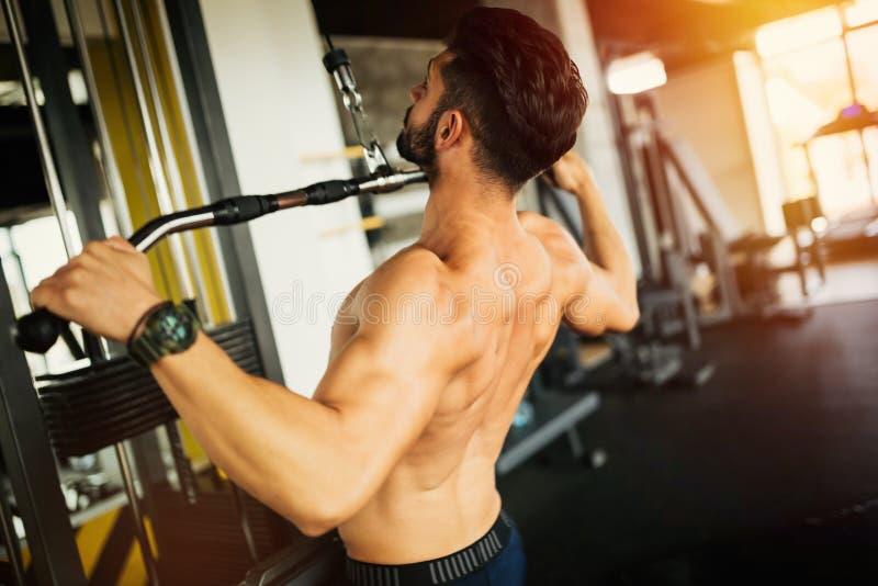 Kroppsbyggare som utarbetar i idrottshall royaltyfri foto