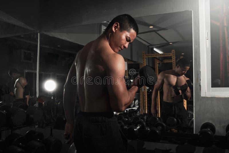 Kroppsbyggare som utarbetar med hantelvikter på idrottshallen Mankroppsbyggare som gör övningar med hanteln Muskulös kropp för ko fotografering för bildbyråer
