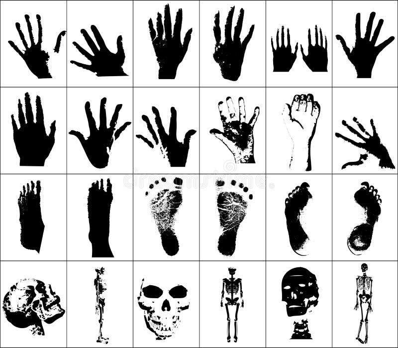 kroppsdelar stock illustrationer