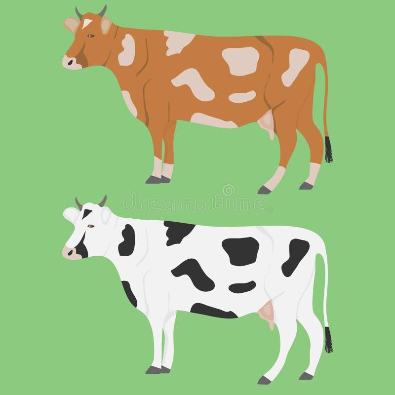 Krowa, kilka krowy Realistyczna krowa na zielonym tle ilustracji