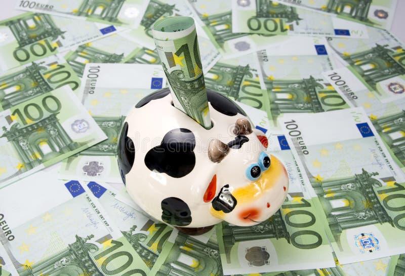 Krowa moneybox na zielonym polu euro notatki zdjęcia royalty free