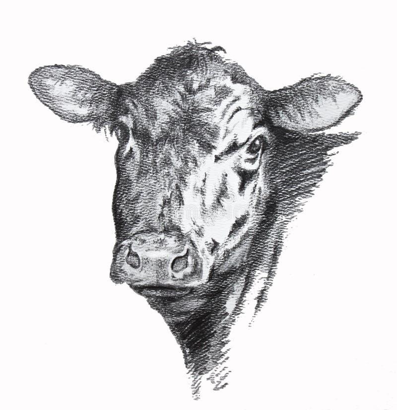 Krowa ołówkowy rysunek royalty ilustracja