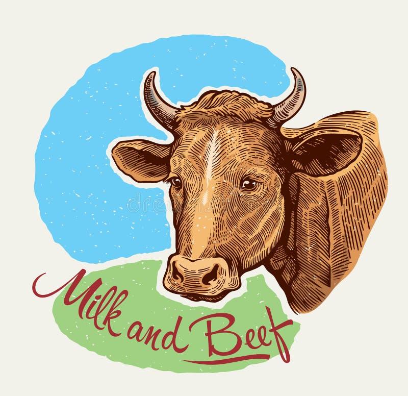 Krowy głowa ilustracji