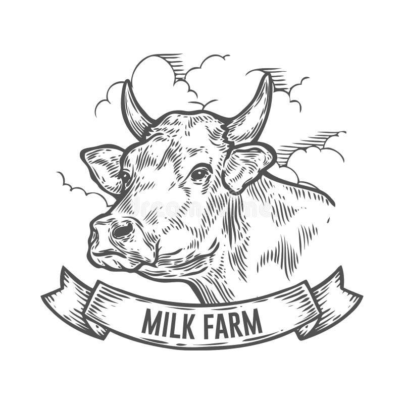 Krowy głowa Ręka rysujący nakreślenie w graficznym stylu Rocznika rytownictwa wektorowa ilustracja ilustracji