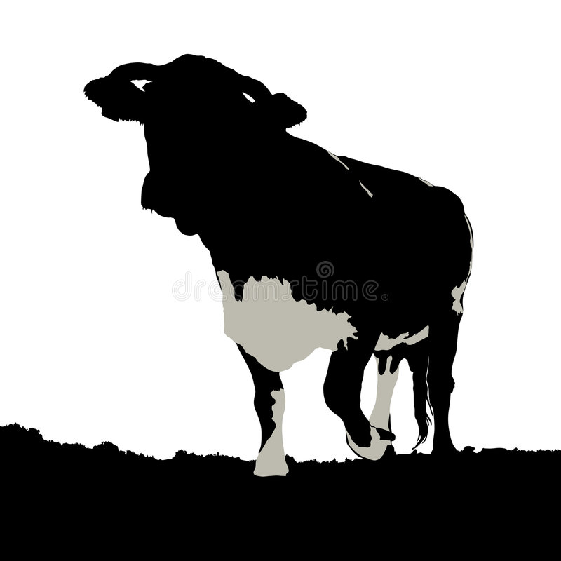 krowy ilustracji łąki ilustracji