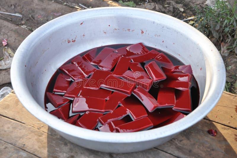 Krowy Krwionośny Karmowy Rewolucjonistki Pławik Dużo obrazy royalty free