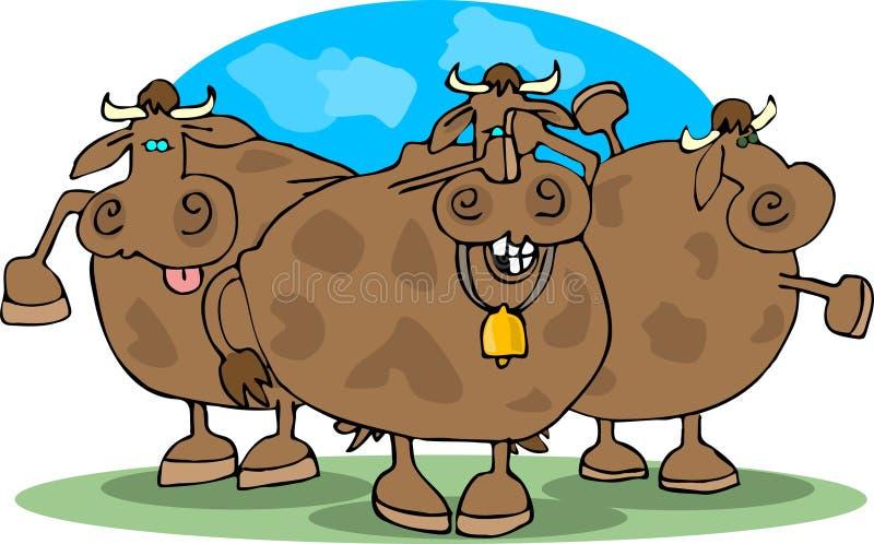 krowy kuli. ilustracja wektor