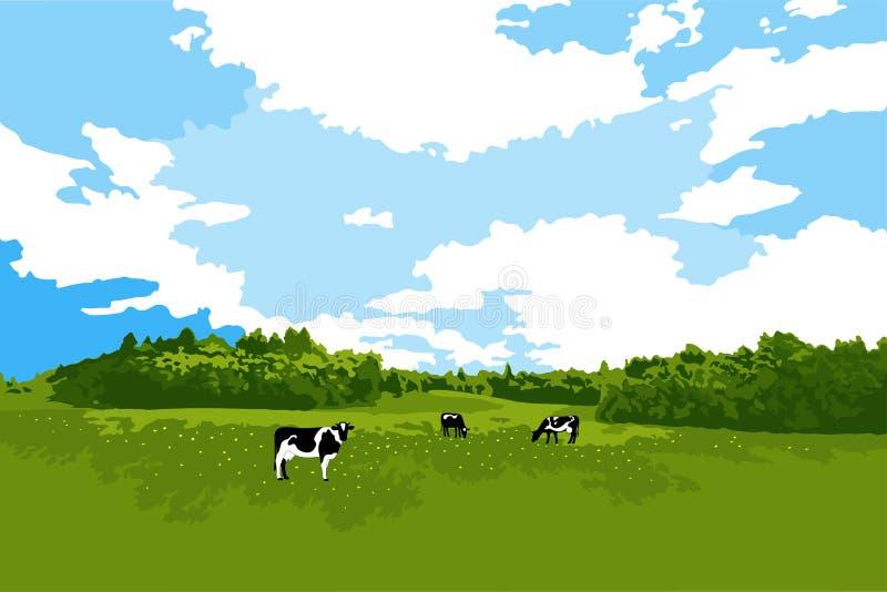 Krowy pasa na łące royalty ilustracja